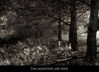 The monsters are hide by Lady-Liseth