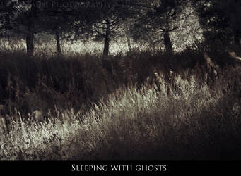 Sleeping with ghosts by Lady-Liseth
