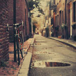 Boston: Cedar Line Way. by inbrainstorm