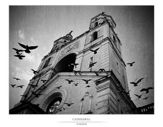 Metropolitan Cathedral by murilo78