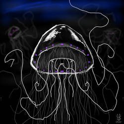 Sketch a Jellyfish by DeadRabbit1978