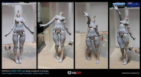 (New)Tiny body sculpting progress 03 by DollPamm
