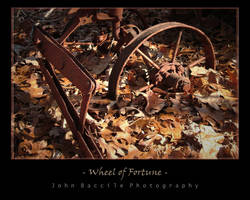 Wheel of Fortune by barefootphotography