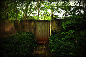 Alive Behind the Green Door by barefootphotography