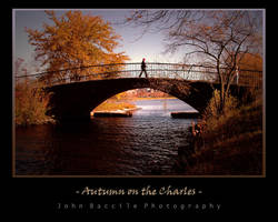 Autumn on the Charles River by barefootphotography