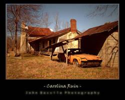 Carolina Ruin by barefootphotography