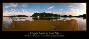 Lloyd's Creek Flats by barefootphotography