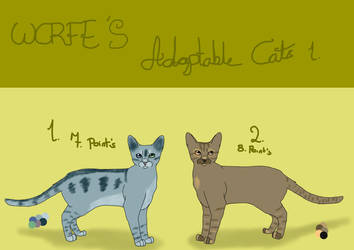 Adoptable cats 1 by WCRFE