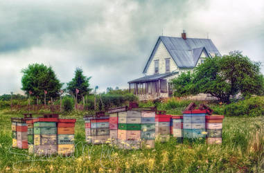 Farmhouse in Wallace, Nova Scotia, Canada by ShawnaMac