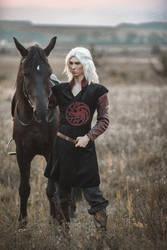 Game of Thrones - Viserys Targaryen by vergiil-sparda