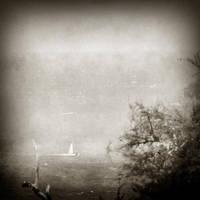 Grey Sky Morning by ArjenCalter