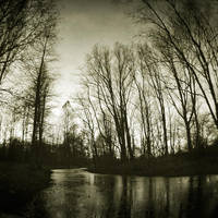Left Alone by ArjenCalter