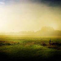 Silent Land II by ArjenCalter