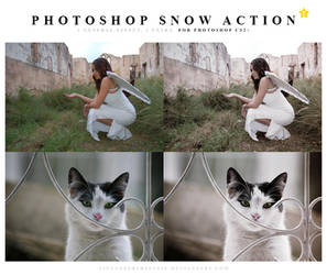 Photoshop Snow Action by meganjoy