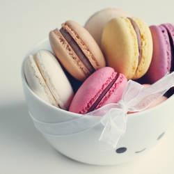 Macarons by meganjoy