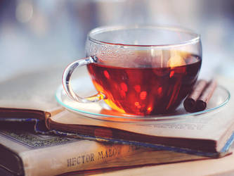 Winter tea by meganjoy