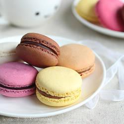 Macarons, pretty patties by meganjoy