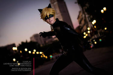 Chat Noir- Justice in the streets of Paris by twinfools