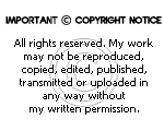 Copyright notice by AngelLale87