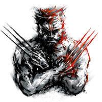 Wolverine by calvincavalry