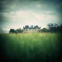 Grasses castle ... by julie-rc