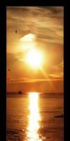 Sunset Photograph by goteki
