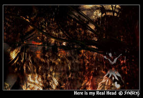 Here is my Real Head by Synbryo