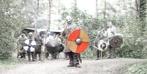 Viking Warband by martin-gill