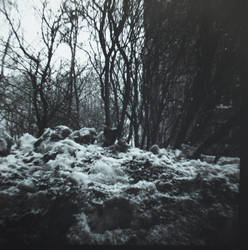 black'n'white by Perlamuter