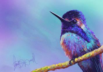 Abstract Bird by gavinodonnell