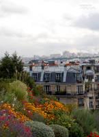 View from Sacre-Coeur. by SerenaSilvi