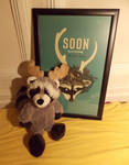 Soon Raccoon Plushie - From 'The Brain Scoop' by eembuc1000