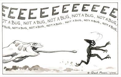 Not a Bug by VARAKIENEN