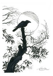 On wing of night - Raven moon by VARAKIENEN
