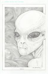 HYBRID, reptilian grey. by VARAKIENEN