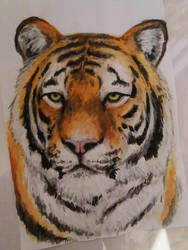 Tiger painting by Kyuria