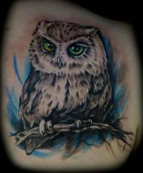 Cutesy Owl by GingerZombeh