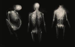 Three bodies by Zxoqwikl