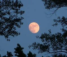 Moon Stock by Melyssah6
