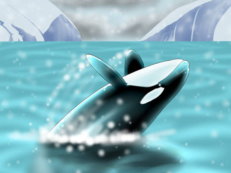 Yaka -- Cetacean Secret Santa by MerciResolution