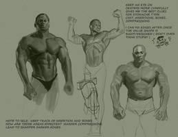 Stomach studies for myself by FUNKYMONKEY1945