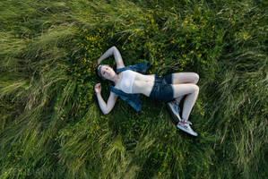 Im Gras by artinkl