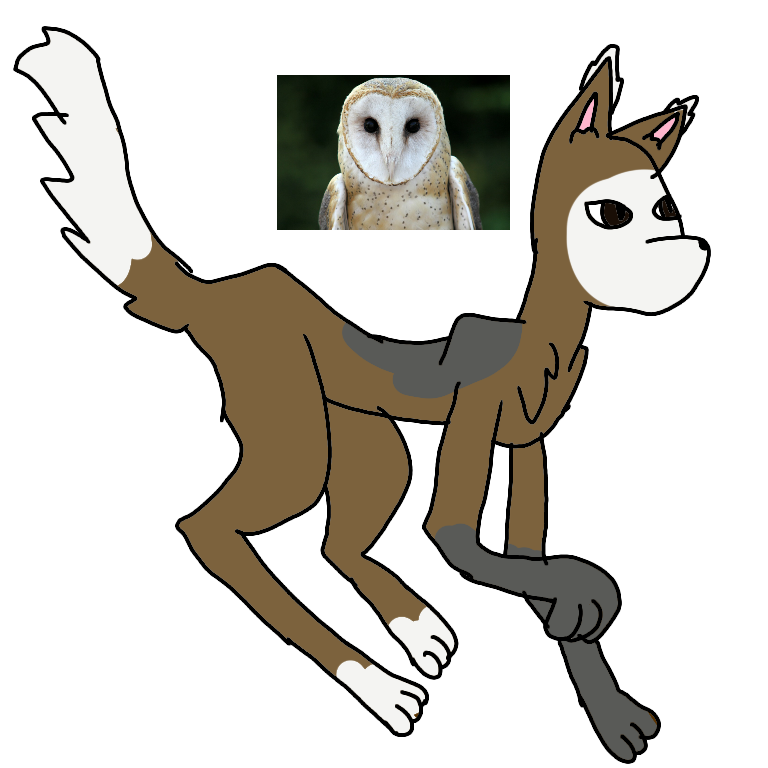Owl themed adoptable!(open!)(only taking points) by loudyloud