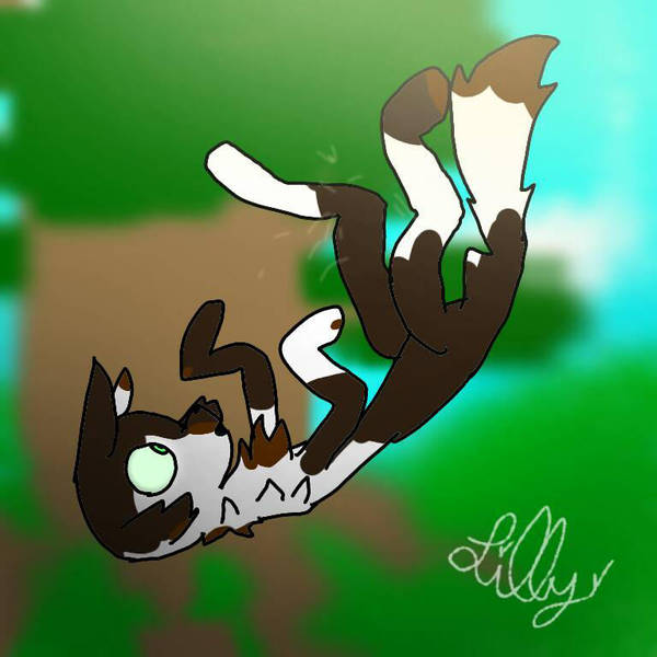 Spottedpaw's fall by loudyloud