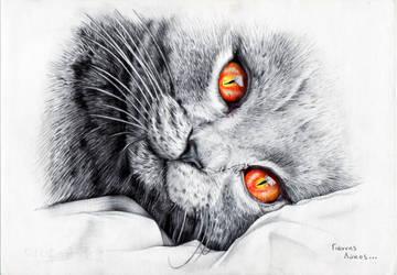 Hello kitty, goodmorning.. by Johny-Leek-Sama