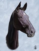 Horse 6 by Skye-Fyre