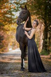 Royal Autumn by Spiegelmomente