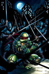 teenage mutant ninja turtles by deemonproductions