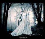 Porcelium by 870