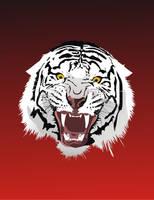 Tiger head by dccanim